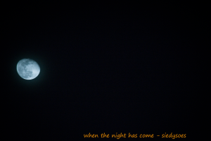Blue Moon - Siedysoes